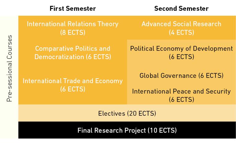 Plan de estudios (opción de un año a tiempo completo)