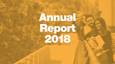IBEI Annual Report 2018